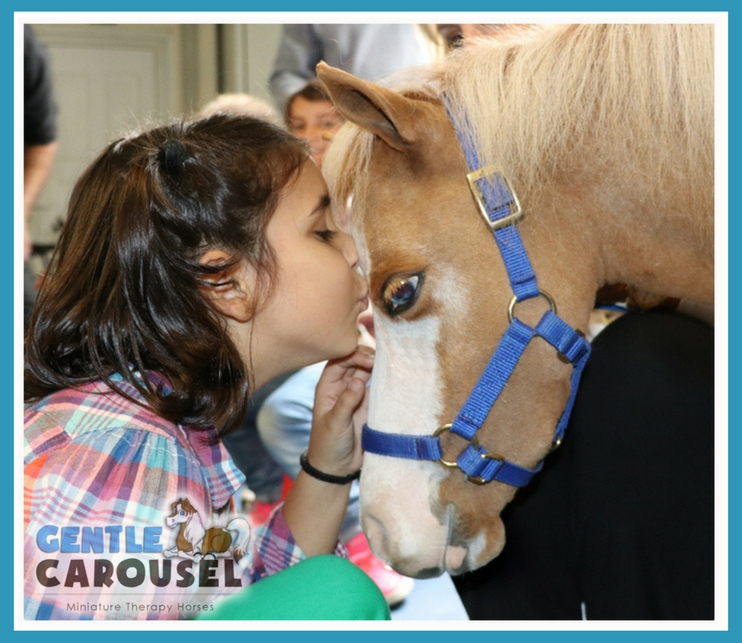 Greece News Gentle Carousel Miniature Therapy Horses Orphanage 742x643
