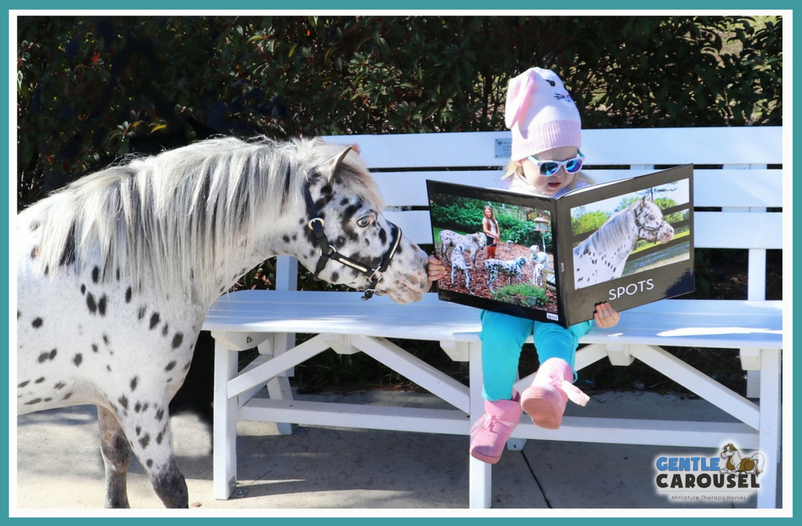 Therapy horse circus reading program 1141x742