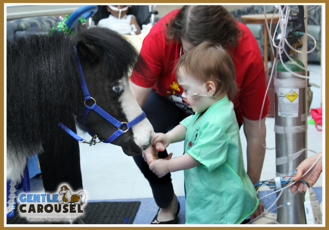Gentle Carousel Minis Little Hero Horse Magic Therapy Hospital Visit 1068x747.jpg