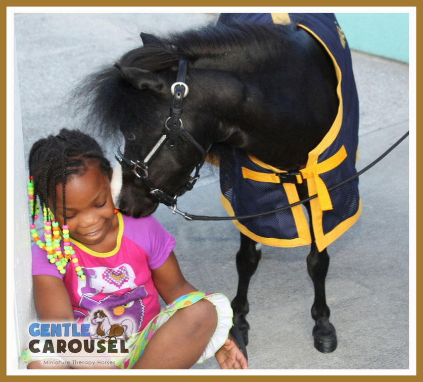 charleston emanuel african methodist episcopal church magic little hero horse gentle carousel therapy 837x757