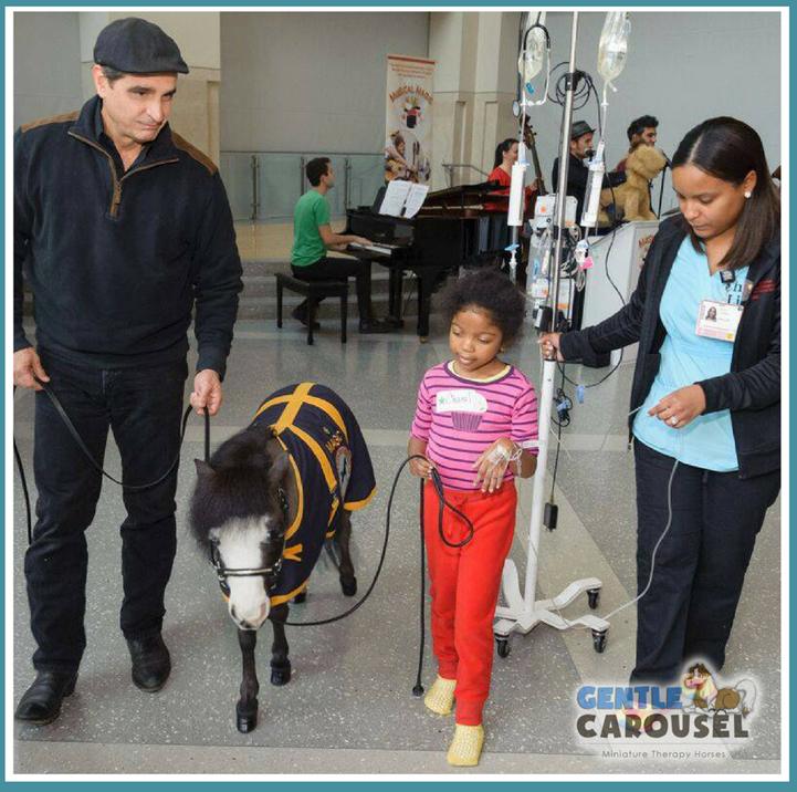 therapy horse magic hospital-gentle carousel walking1000x980