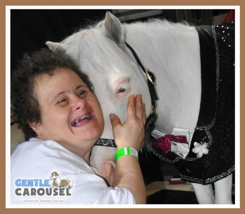 therapy horse aladdin hug gentle carousel hero horses 836x731