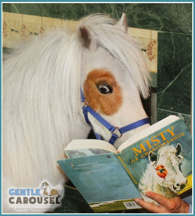 therapy horse misty read book gentle carousel hero horses 646x716