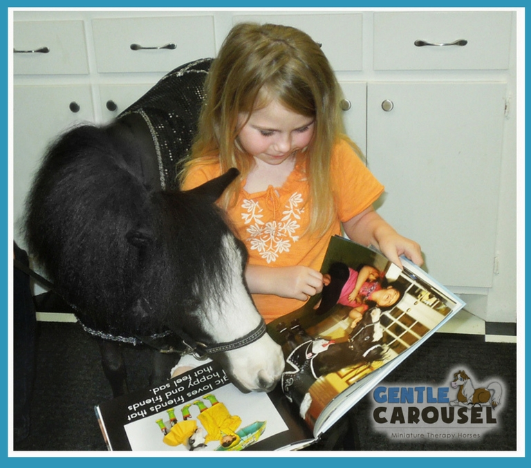 Gentle Carousel Miniature Therapy Horses Horse News Tornado Moore OK 768x677
