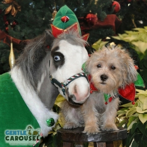Horse Quiz Gentle Carousel Holiday Wear 300x300