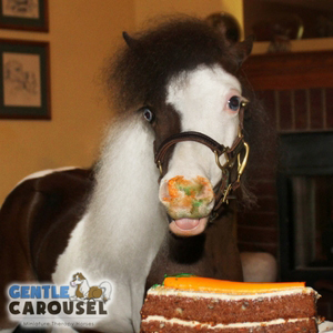 What Horse Are You Gentle Carousel Happy Birthday 300x300