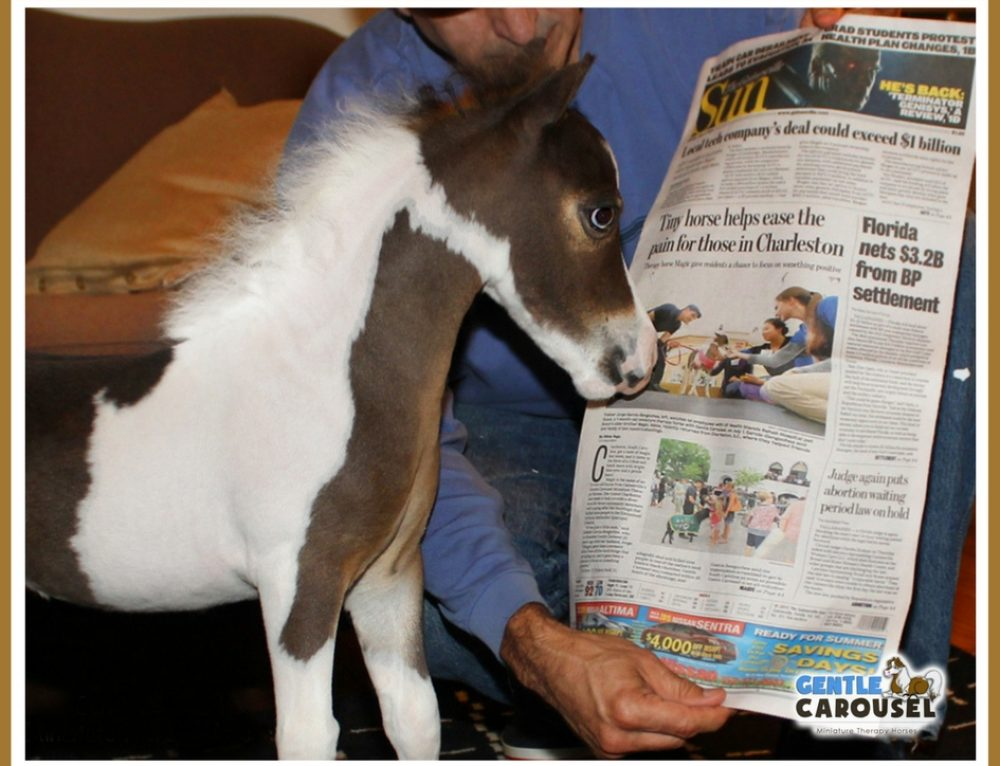 Scout's First Front Page