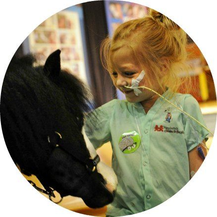 Miniature Therapy Horse Magic Childrens Hospital 438x438