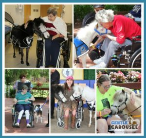Wheelchair Gentle Carousel Mini Hospital Visits Therapy Horses News 1097x1038