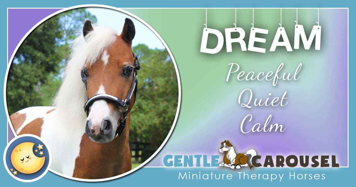 Dream Miniature Horse - Equine Horse Therapy 1200x630