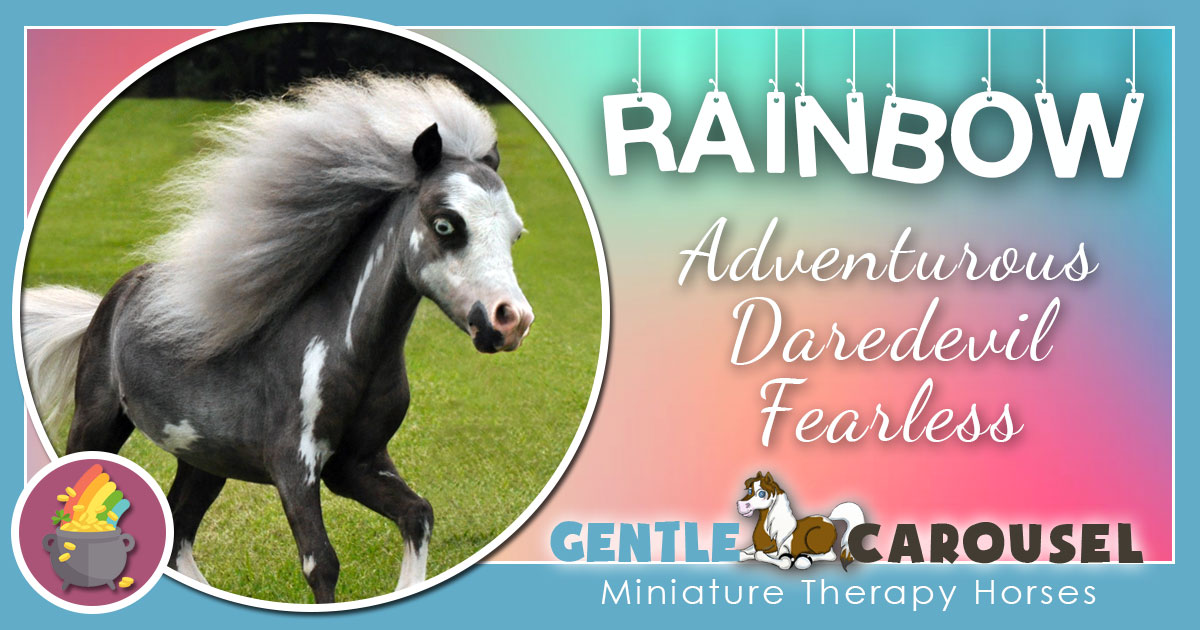 Rainbow Miniature Horse - Equine Horse Therapy 1200x630
