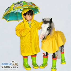 Horse Quiz Gentle Carousel Anything Practical 300x300
