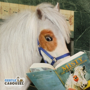 Horse Quiz Gentle Carousel Reading 300x300