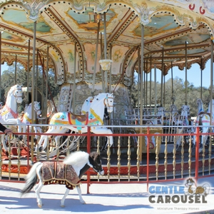 Horse Quiz Gentle Carousel Theme Parks 300x300
