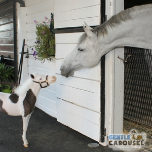 Horse Test Gentle Carousel Make Good Friends 300x300